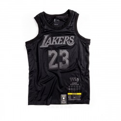 best loved 6d7f6 81f78 Nike Nba Los Angeles Lakers Swingman Jersey MVP LeBron James