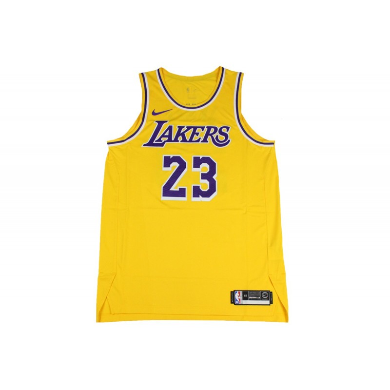 reputable site 49926 bf721 Nike NBA Los Angeles Lakers Icon Authentic Jersey Lebron James