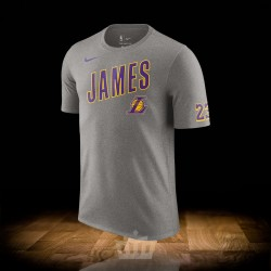 hot sale online adee0 d1044 Nike NBA Los Angeles Lakers Lebron James Dry Tee ES Logo