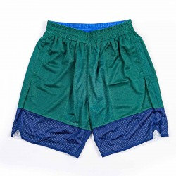 Mitchell & Ness Branded Two Side Short Green Blue