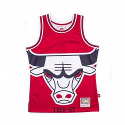 Mitchell & Ness NBA Blown Out Fashion Jersey Chicago Bulls Red