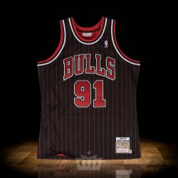 wholesale dealer a1d52 0608e Mitchell & Ness nba 1995-96 Alternate Chicago Bulls Authentic Jersey Dennis  Rodman